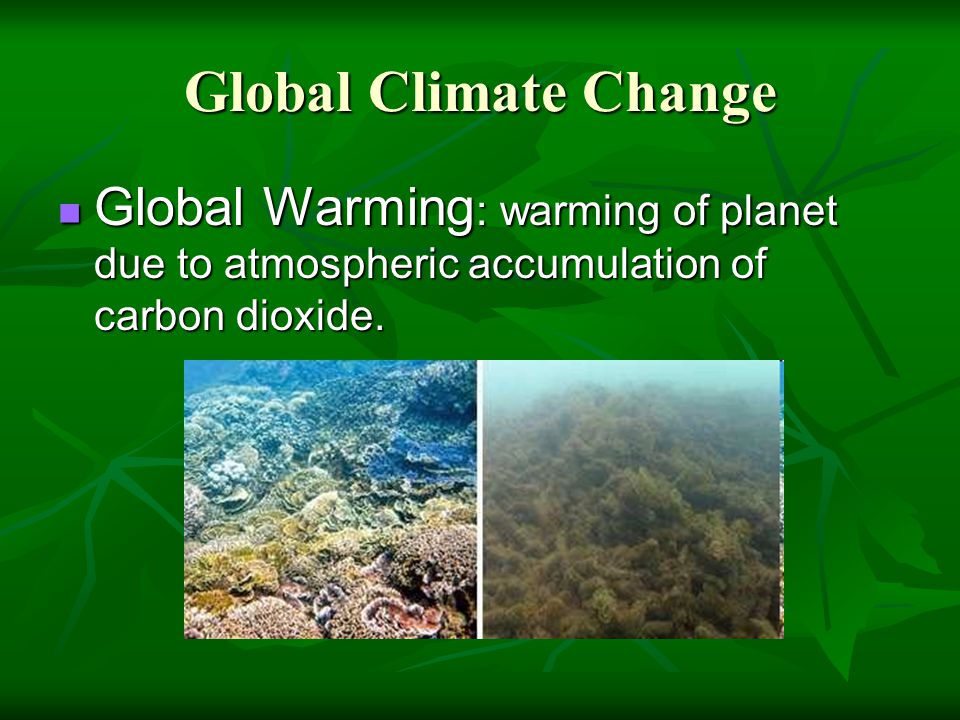 Global Climate Change Global Warming : warming of planet due to atmospheric accumulation of carbon dioxide. Global Warming : warming of planet due to