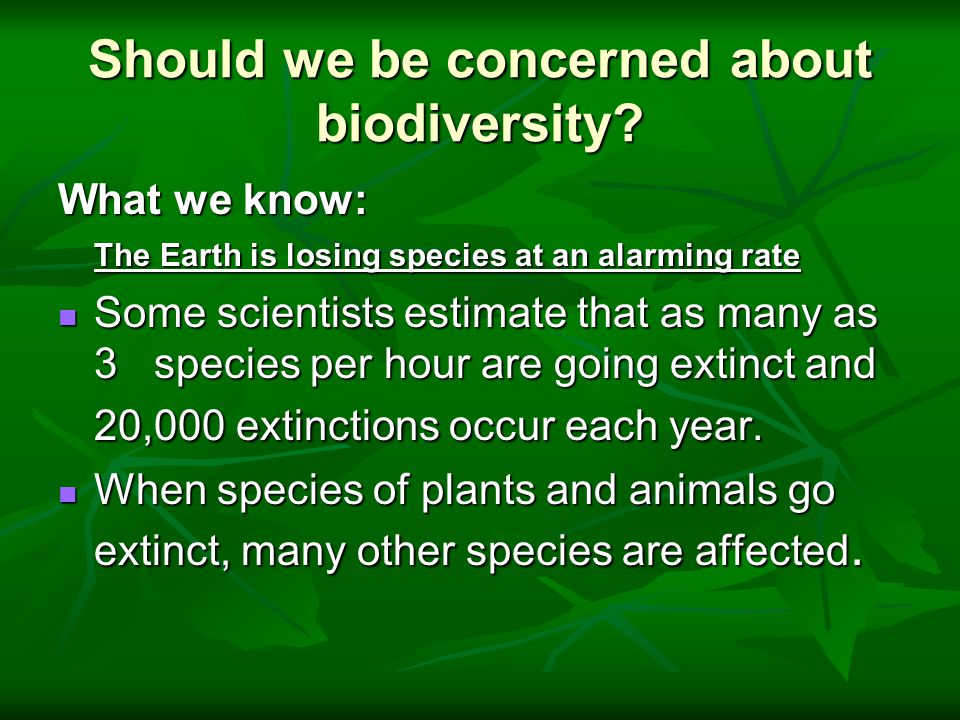 Should we be concerned about biodiversity? What we know: The Earth is losing species at an alarming rate Some scientists estimate that as many as 3 sp