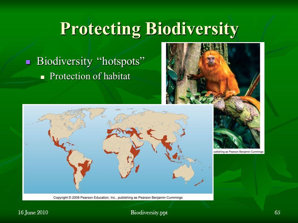 Protecting Biodiversity 16 June 2010Biodiversity.ppt65 Biodiversity hotspots Biodiversity hotspots Protection of habitat Protection of habitat