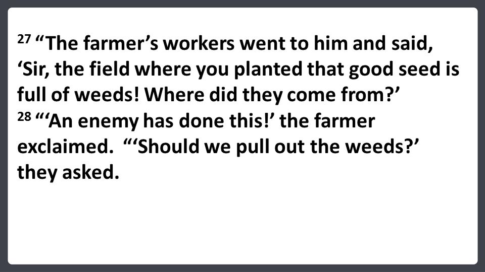 27 The farmer's workers went to him and said, 'Sir, the field where you planted that good seed is full of weeds.