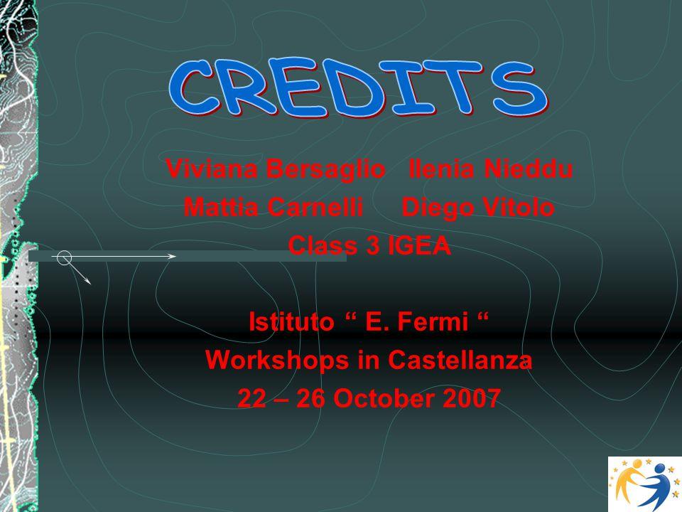 "Viviana Bersaglio Ilenia Nieddu Mattia Carnelli Diego Vitolo Class 3 IGEA Istituto "" E. Fermi "" Workshops in Castellanza 22 – 26 October 2007"