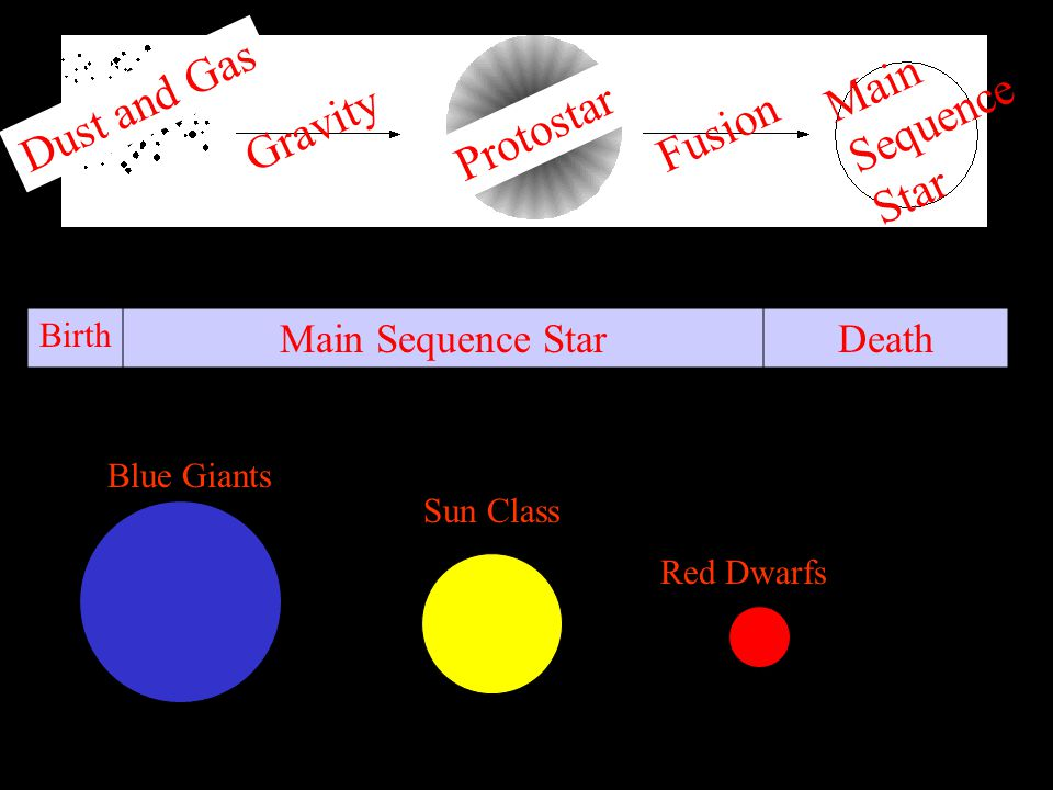 Dust and Gas Gravity Protostar Fusion Main Sequence Star Birth Main Sequence StarDeath Blue Giants Sun Class Red Dwarfs