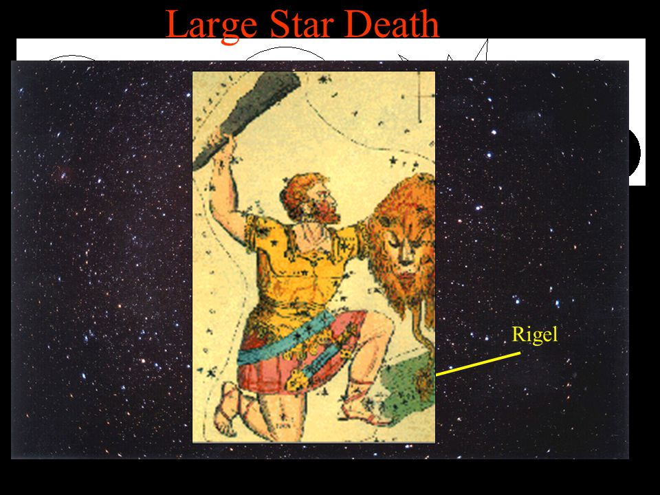 Large Star Death Large MSS To be large a star must be 7 times more massive than out Sun.