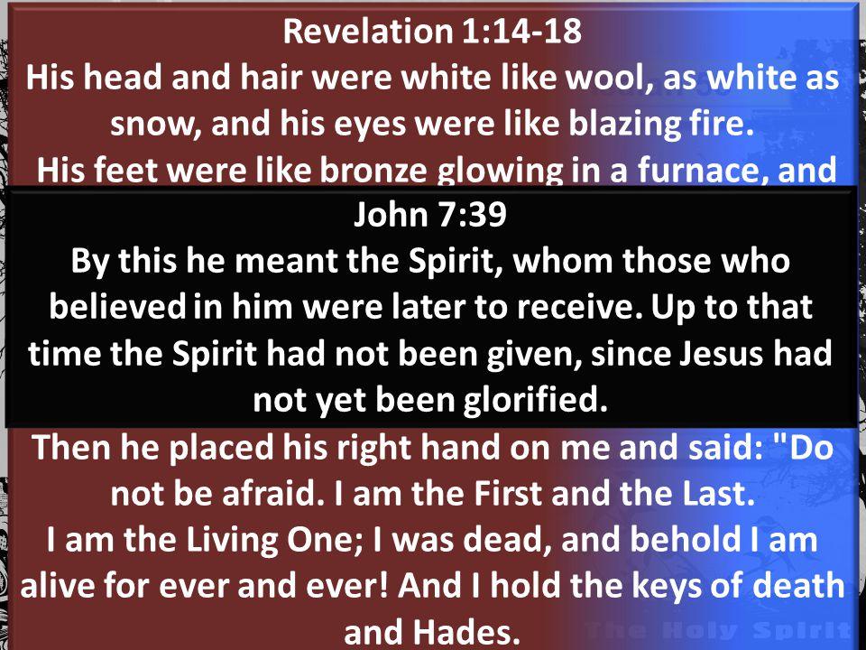 Jesus Prophet Priest King Our Spirit The Prophetic Soil The Caring Soil The Power Soil