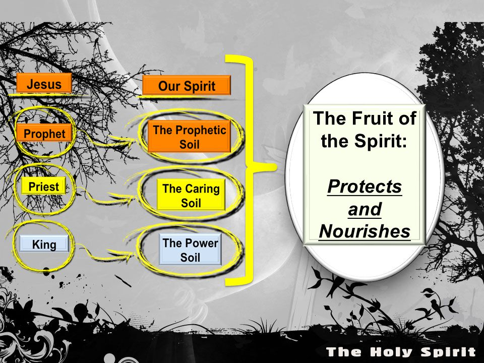 The Fruit of the Spirit: Protects and Nourishes