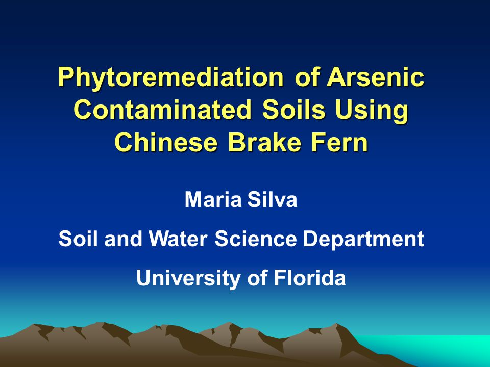  Plant biomass  As concentrations in soil and plant  Soil pH and DOC in the rhizosphere and bulk soil Analyses