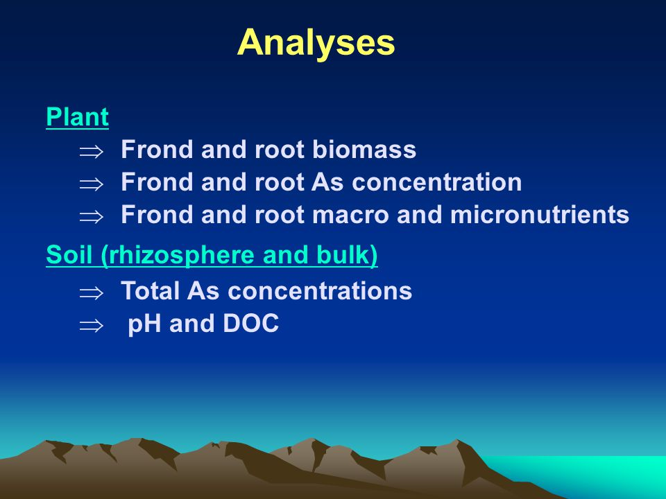 Analyses Plant  Frond and root biomass  Frond and root As concentration  Frond and root macro and micronutrients Soil (rhizosphere and bulk)  Tota