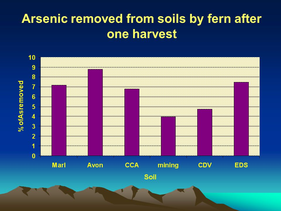 Arsenic removed from soils by fern after one harvest