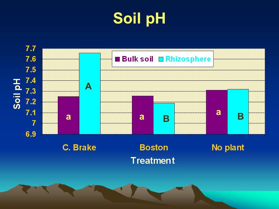 Soil pH aa a A B B