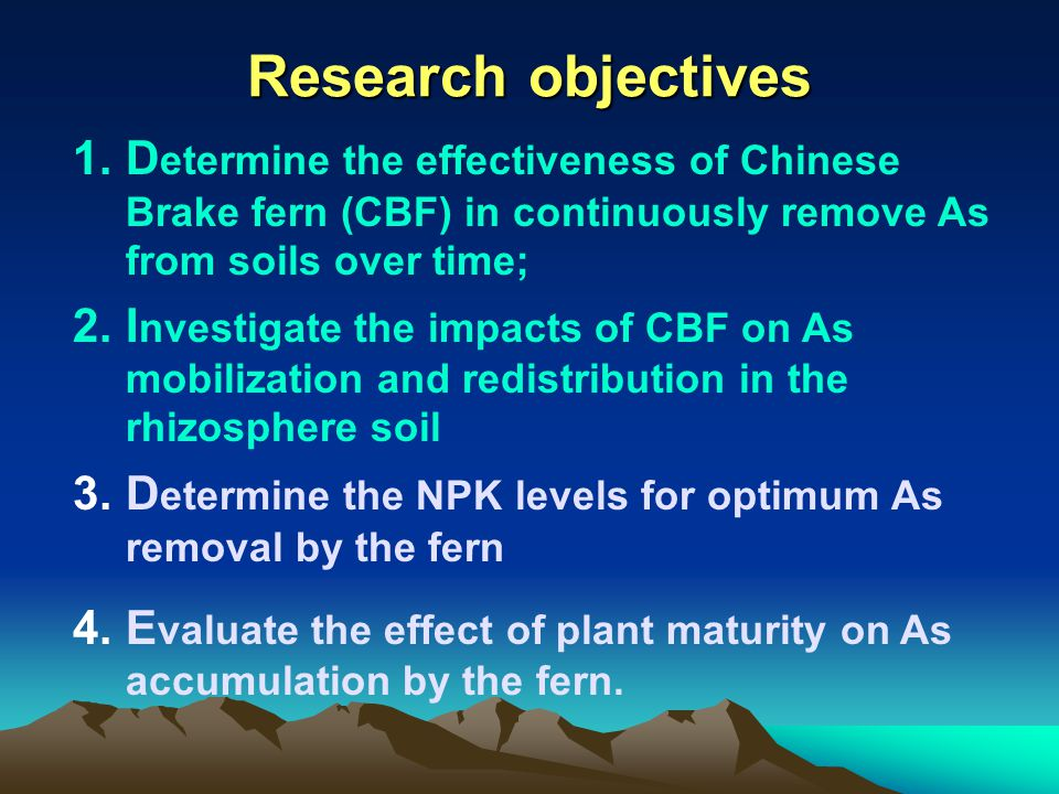 Research objectives 1.D etermine the effectiveness of Chinese Brake fern (CBF) in continuously remove As from soils over time; 2.I nvestigate the impa