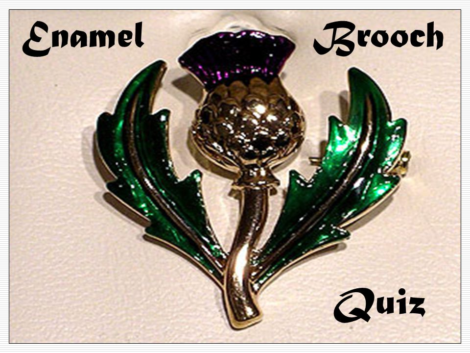 Enamel Brooch Quiz