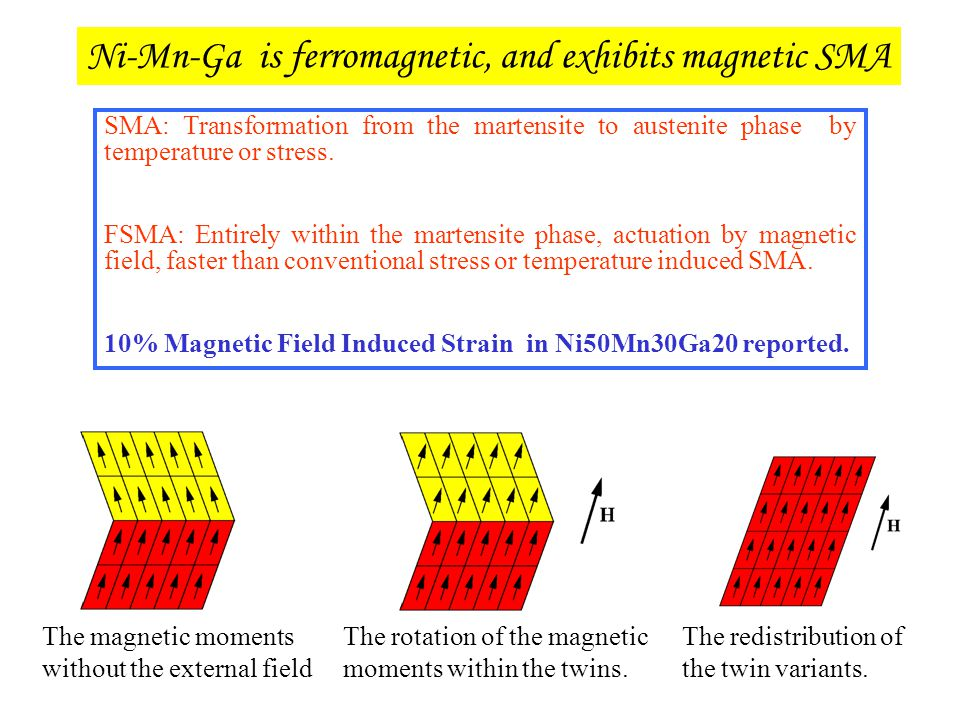The magnetic moments without the external field The rotation of the magnetic moments within the twins. The redistribution of the twin variants. SMA: T