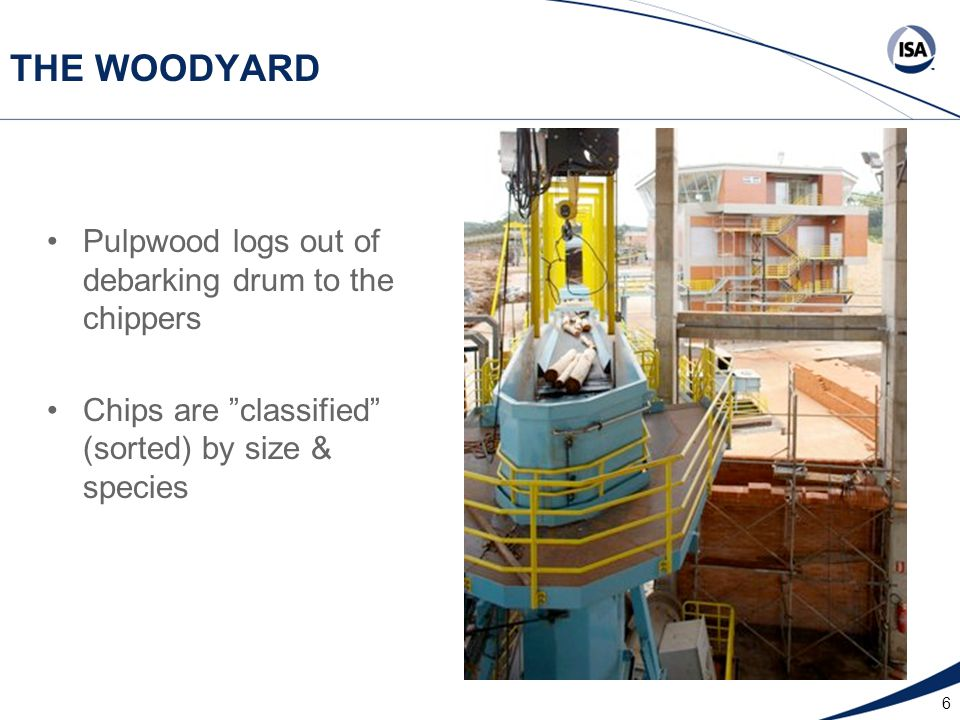6 THE WOODYARD Pulpwood logs out of debarking drum to the chippers Chips are classified (sorted) by size & species