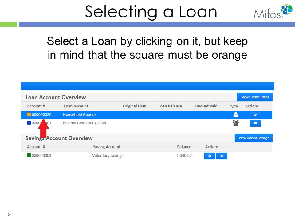 5 Selecting a Loan Select a Loan by clicking on it, but keep in mind that the square must be orange