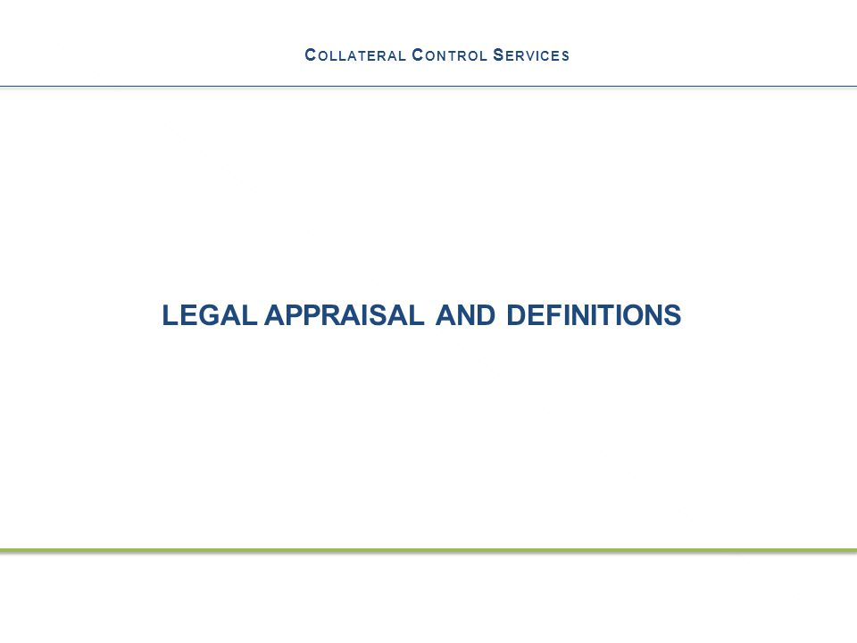C OLLATERAL C ONTROL S ERVICES LEGAL APPRAISAL AND DEFINITIONS 30