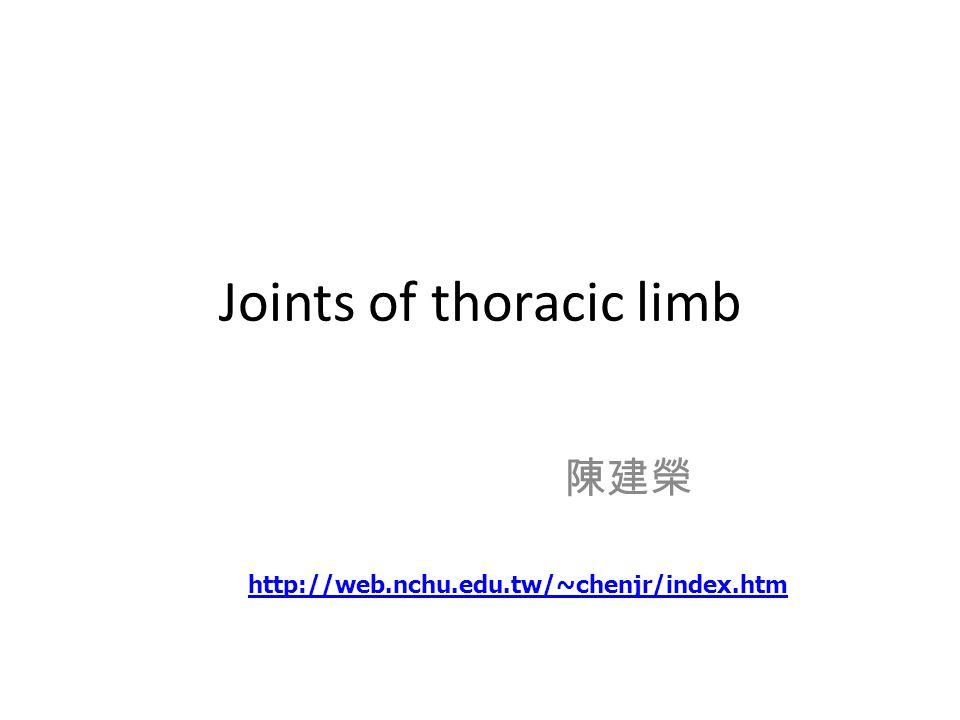 Metacarpophalangeal joints 掌指間關節 ( 飛節 )