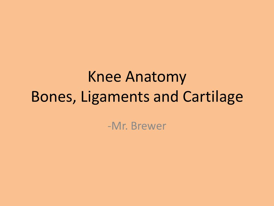 Cruciate Ligaments Anterior Cruciate Ligament (ACL): -The anterior cruciate ligament sits deep in the middle of the knee joint.