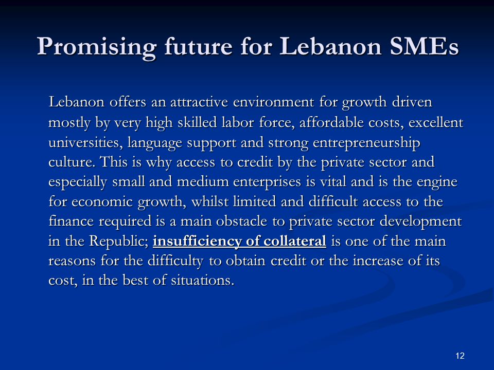 12 Promising future for Lebanon SMEs Lebanon offers an attractive environment for growth driven mostly by very high skilled labor force, affordable costs, excellent universities, language support and strong entrepreneurship culture.