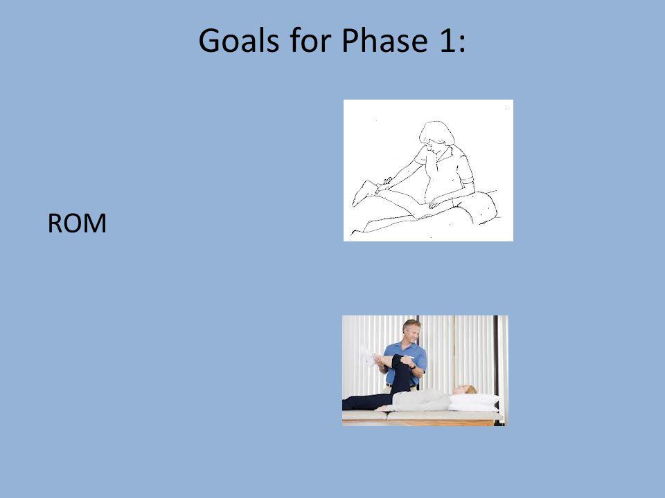 Goals for Phase 1: ROM