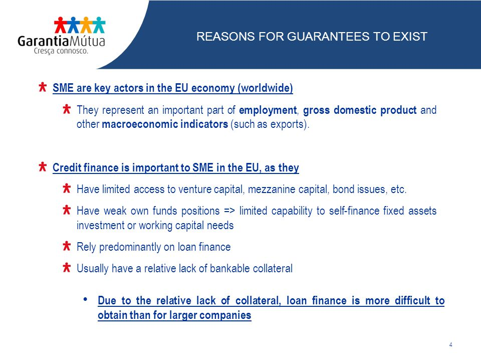 SME are key actors in the EU economy (worldwide) They represent an important part of employment, gross domestic product and other macroeconomic indicators (such as exports).