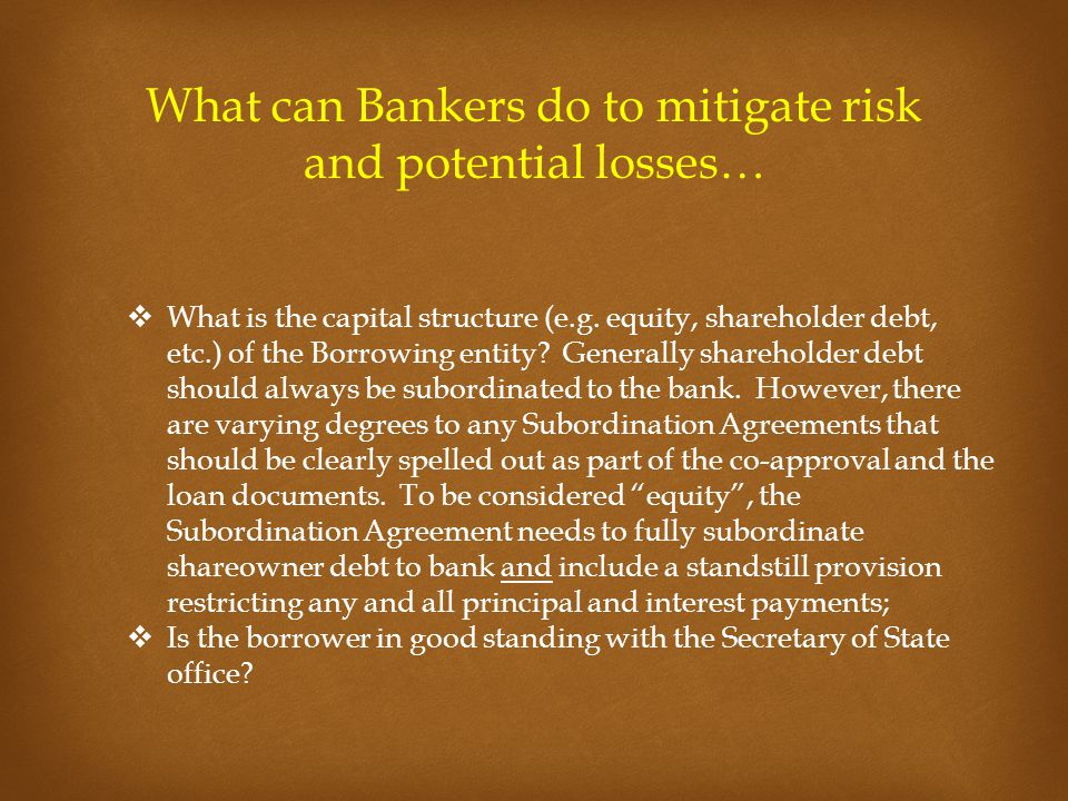 What can Bankers do to mitigate risk and potential losses…  What is the capital structure (e.g. equity, shareholder debt, etc.) of the Borrowing enti