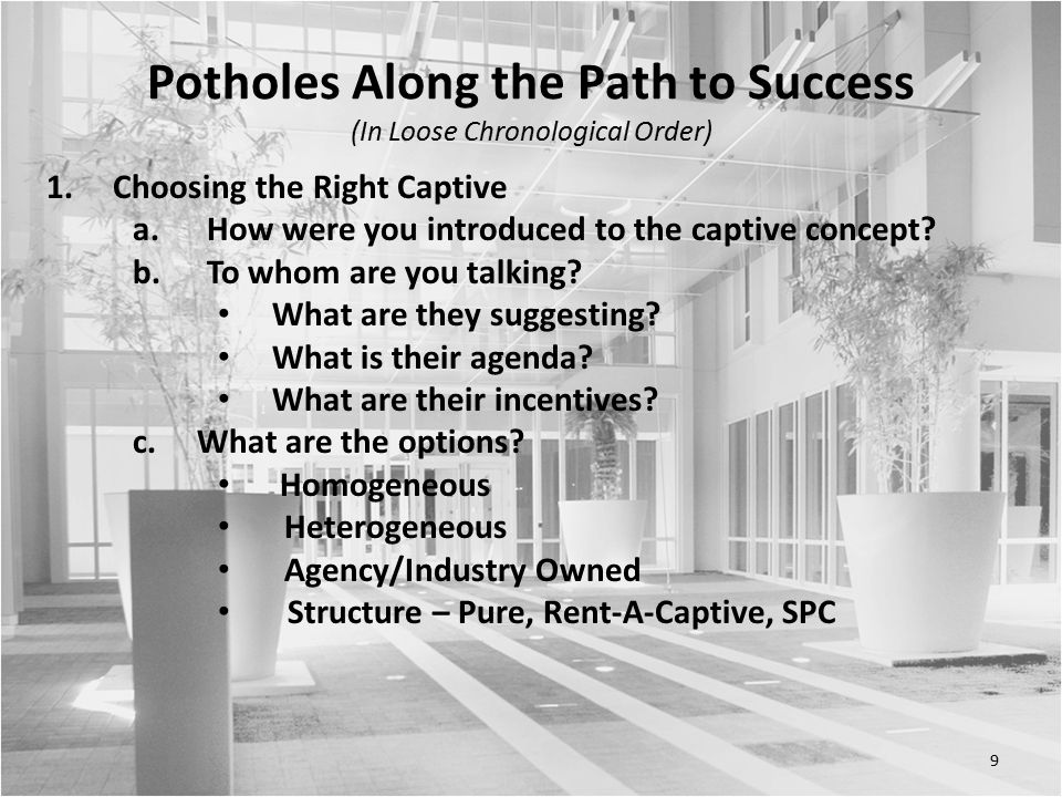 9 Potholes Along the Path to Success (In Loose Chronological Order) 1.