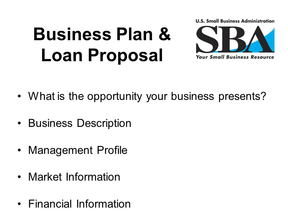 What is the opportunity your business presents? Business Description Management Profile Market Information Financial Information Business Plan & Loan