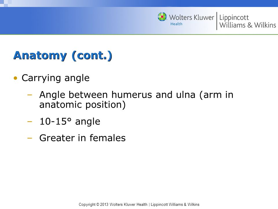 Copyright © 2013 Wolters Kluwer Health | Lippincott Williams & Wilkins Anatomy (cont.) Carrying angle –Angle between humerus and ulna (arm in anatomic position) –10-15° angle –Greater in females