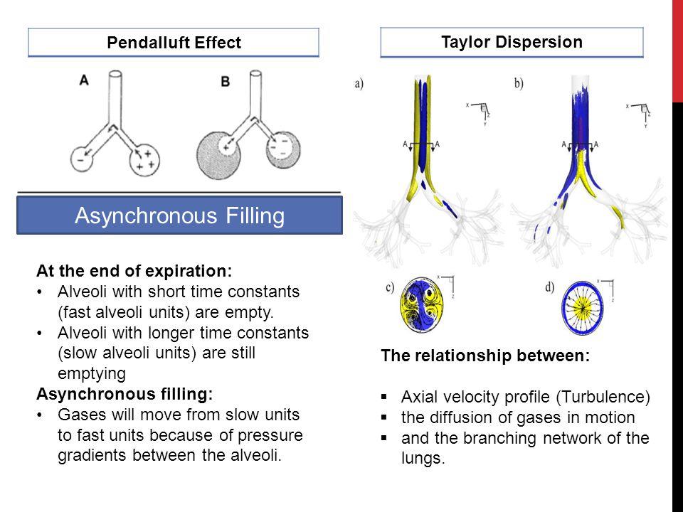 Pneumopertioneum Sub cu-emphysema Pneumopercardium Pneumomediastinum Pneumothorax ARDS