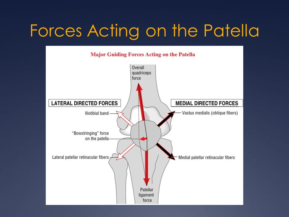 Forces Acting on the Patella