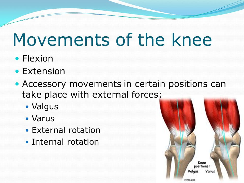 Movements of the knee Flexion Extension Accessory movements in certain positions can take place with external forces: Valgus Varus External rotation I