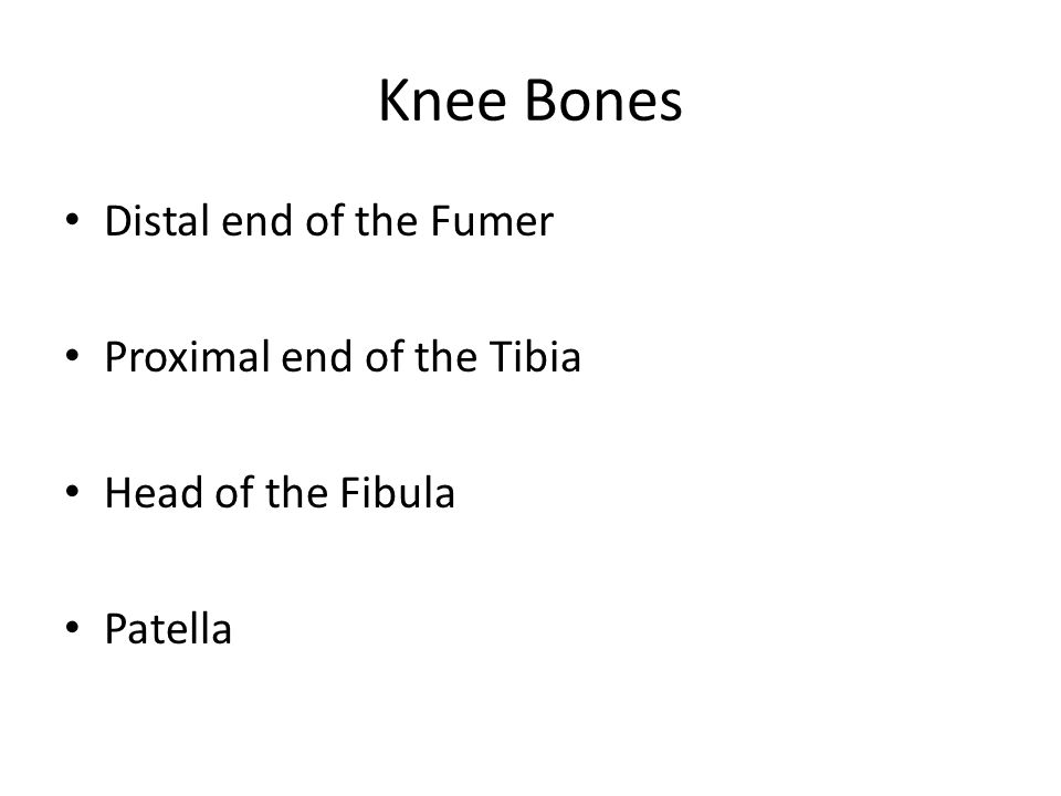 References http://www.ultrasoundpaedia.com/normal- knee/ http://www.ultrasoundpaedia.com/normal- knee/ Tom Clark Ultrasound course Ultrasound guided Musculoskeletal Procedures