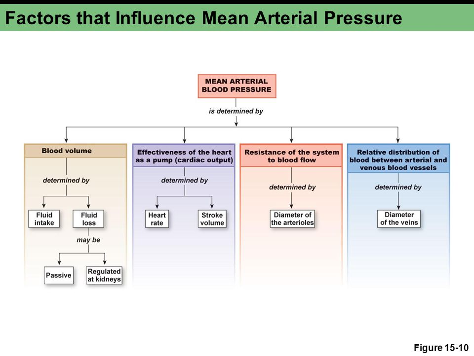 Factors that Influence Mean Arterial Pressure Figure 15-10