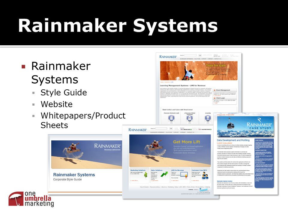  Rainmaker Systems  Style Guide  Website  Whitepapers/Product Sheets