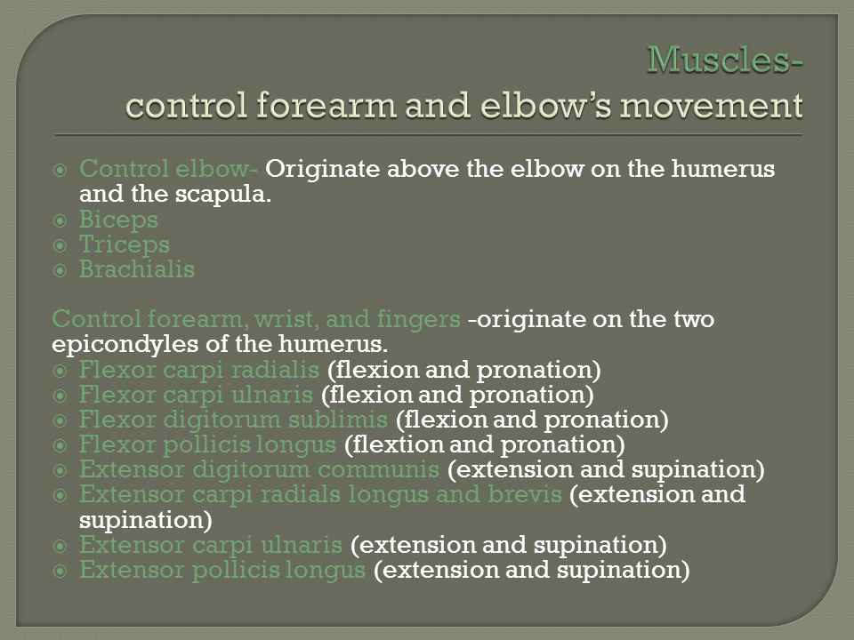 Control elbow- Originate above the elbow on the humerus and the scapula.