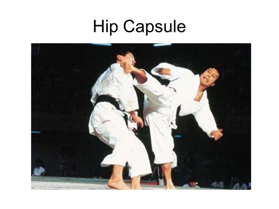 Hip Capsule