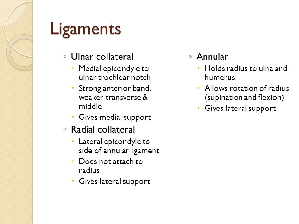 Ligaments ◦ Ulnar collateral  Medial epicondyle to ulnar trochlear notch  Strong anterior band, weaker transverse & middle  Gives medial support ◦