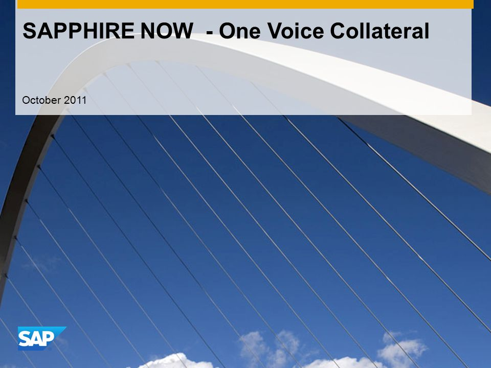 SAPPHIRE NOW - One Voice Collateral October 2011