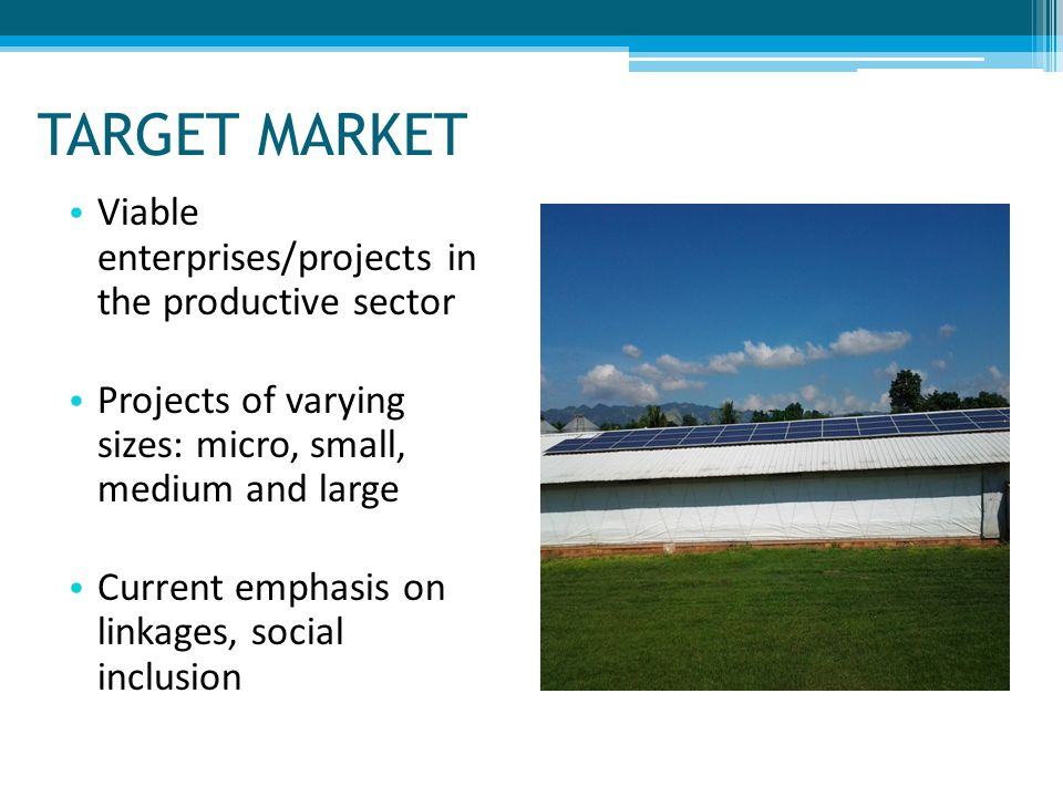TARGET MARKET Viable enterprises/projects in the productive sector Projects of varying sizes: micro, small, medium and large Current emphasis on linka
