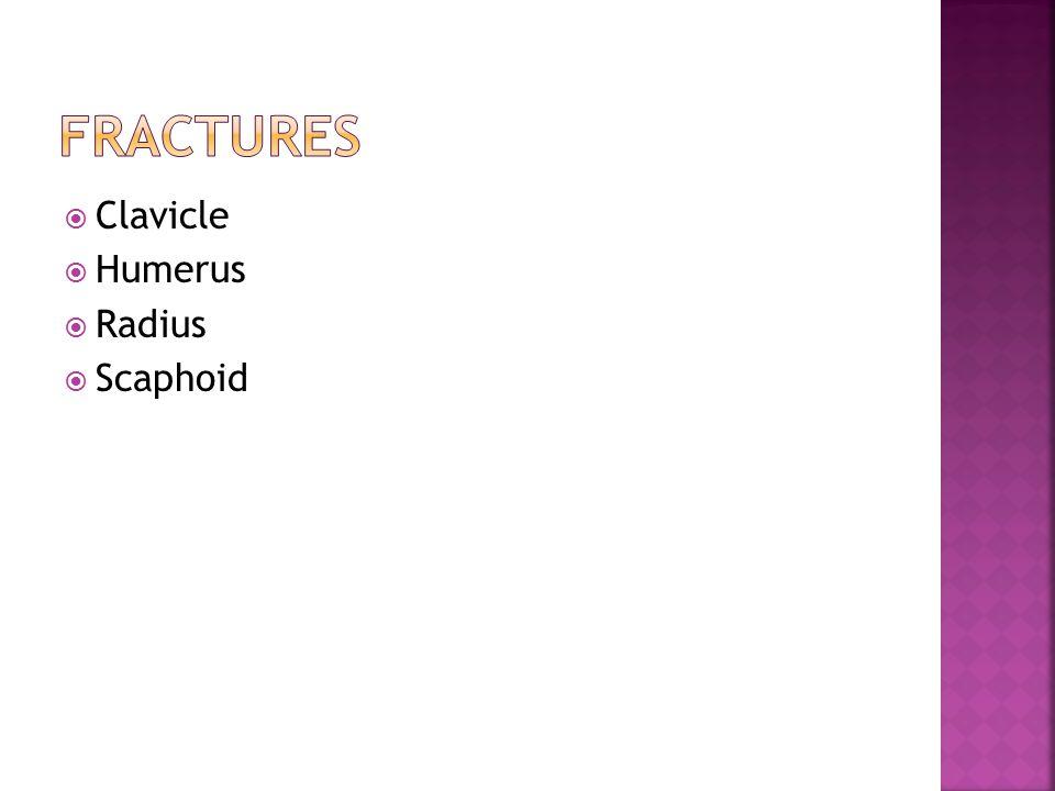  Clavicle  Humerus  Radius  Scaphoid