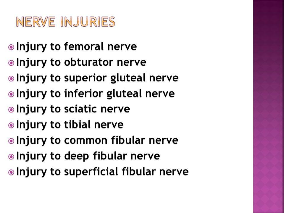  Injury to femoral nerve  Injury to obturator nerve  Injury to superior gluteal nerve  Injury to inferior gluteal nerve  Injury to sciatic nerve