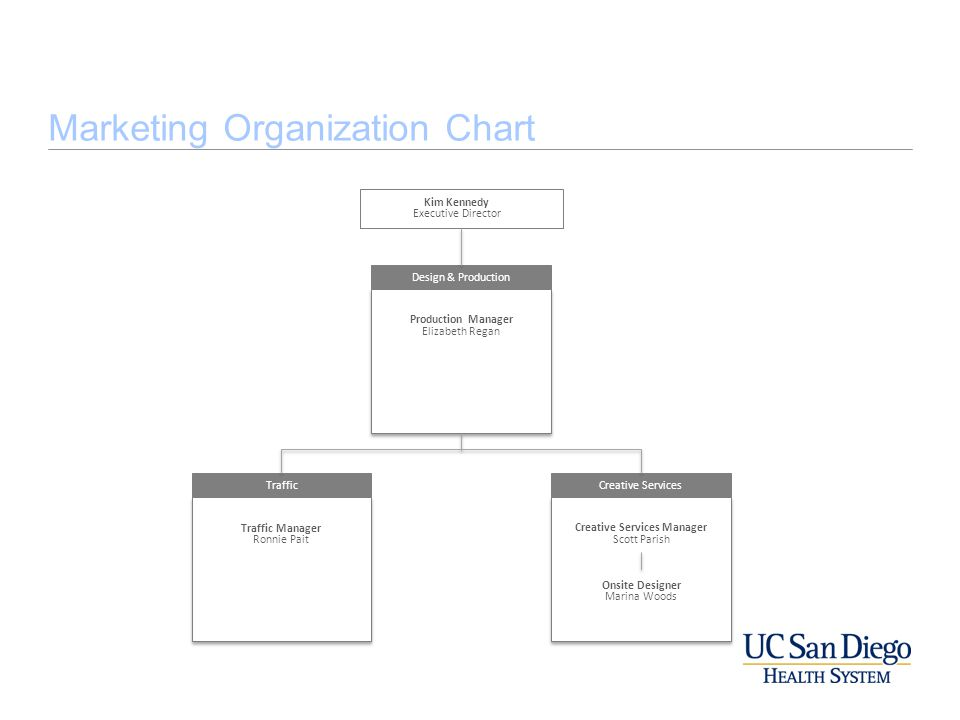 Marketing Organization Chart Kim Kennedy Executive Director o Design & Production Production Manager Elizabeth Regan Production Manager Elizabeth Rega