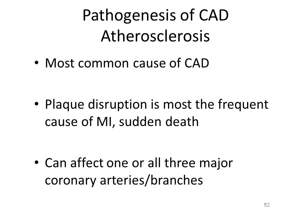 Pathogenesis of CAD Atherosclerosis 51