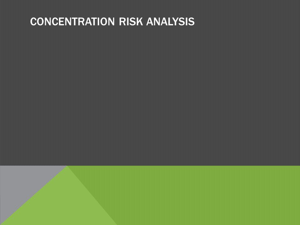 CONCENTRATION RISK ANALYSIS