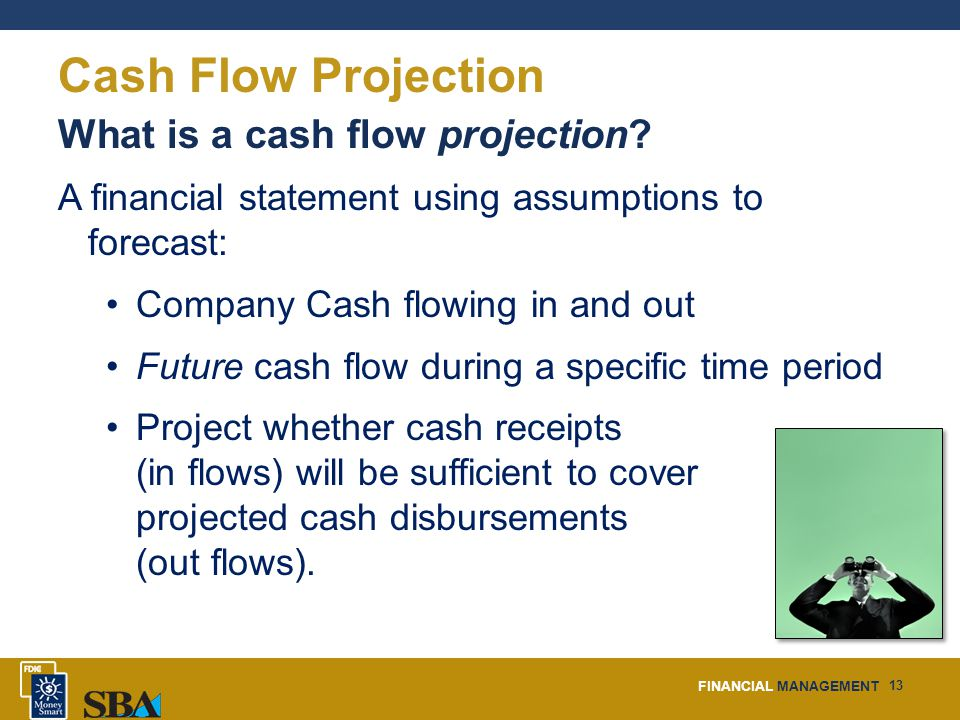 FINANCIAL MANAGEMENT 13 Cash Flow Projection What is a cash flow projection.