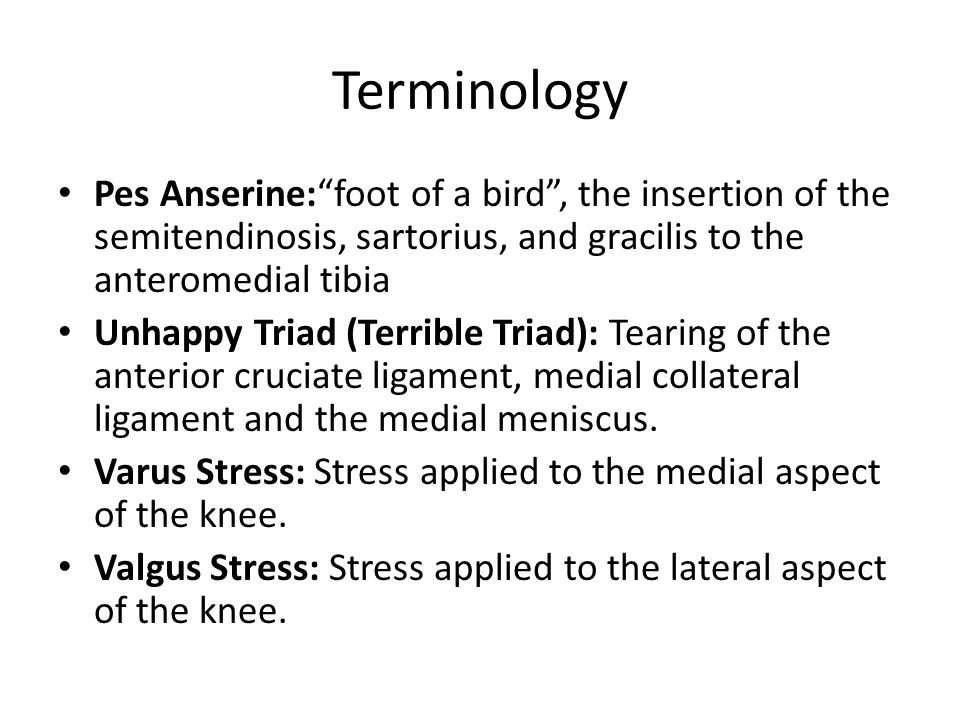 """Terminology Pes Anserine:""""foot of a bird"""", the insertion of the semitendinosis, sartorius, and gracilis to the anteromedial tibia Unhappy Triad (Terri"""