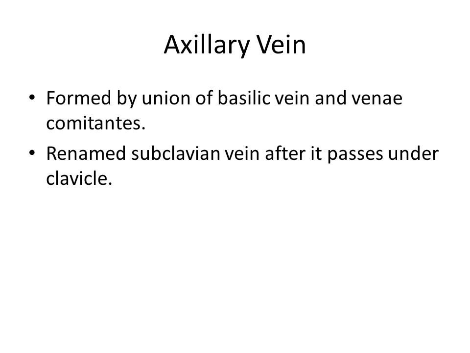 Axillary Vein Formed by union of basilic vein and venae comitantes. Renamed subclavian vein after it passes under clavicle.