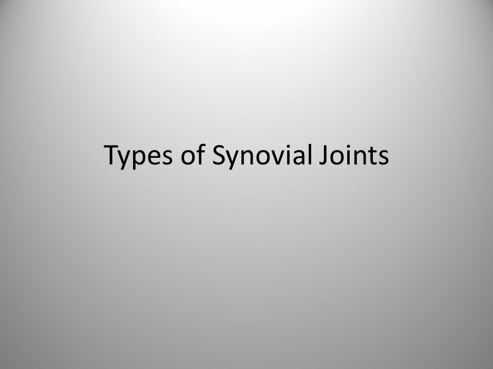 Selected Synovial Joints: The Knee This is considered the most complex joint in the human body.