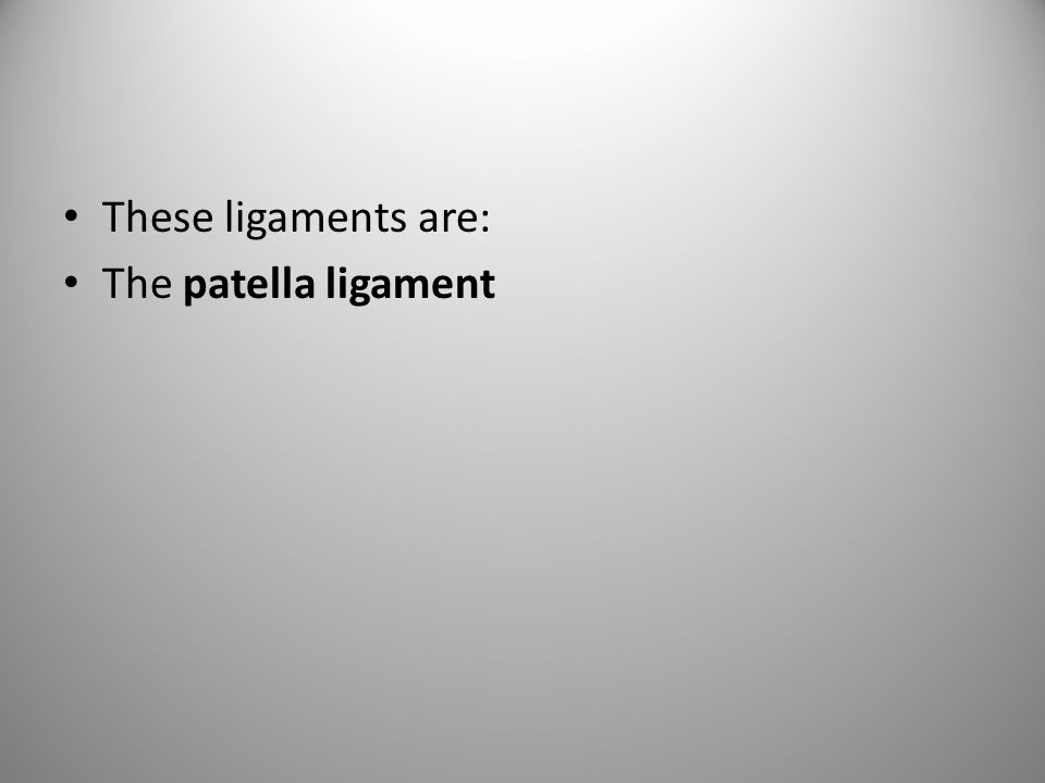 These ligaments are: The patella ligament