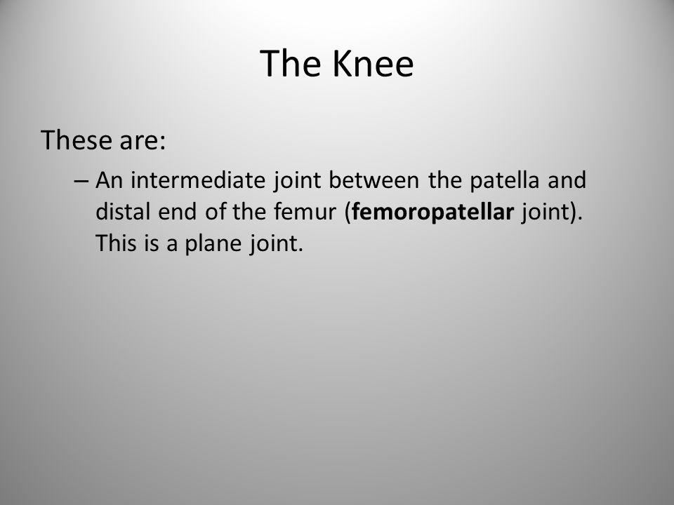 The anterior and posterior cruciate ligaments cross each other forming an X in the notch between the femoral condyles.